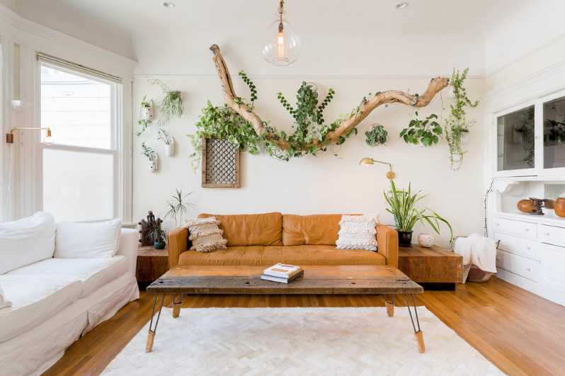 urban jungle decoracao com plantas 1